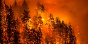 Klimaet tåler ikke mere varm luft